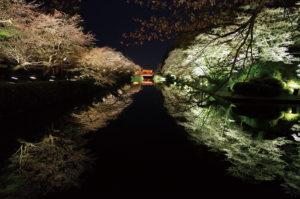米沢市「松が岬公園の桜」