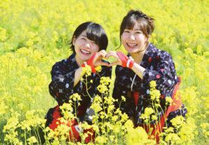 三川町「菜の花祭り」